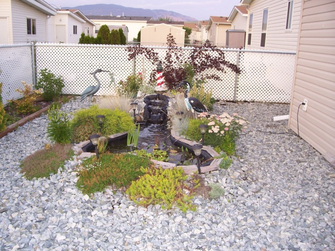 Patio-pond and Waterfall